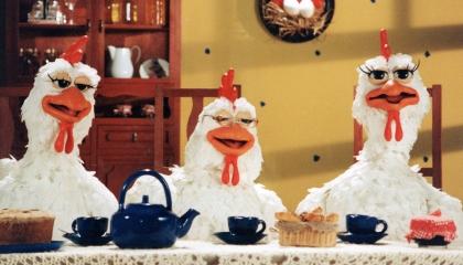 Pollos-destacada